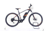 R Raymon HardRay E-Nine 2.0 E-Bike 2021