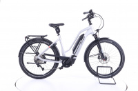 Flyer Upstreet3 7.10 E-Bike Damen cast silver gloss 2021 750 Wh